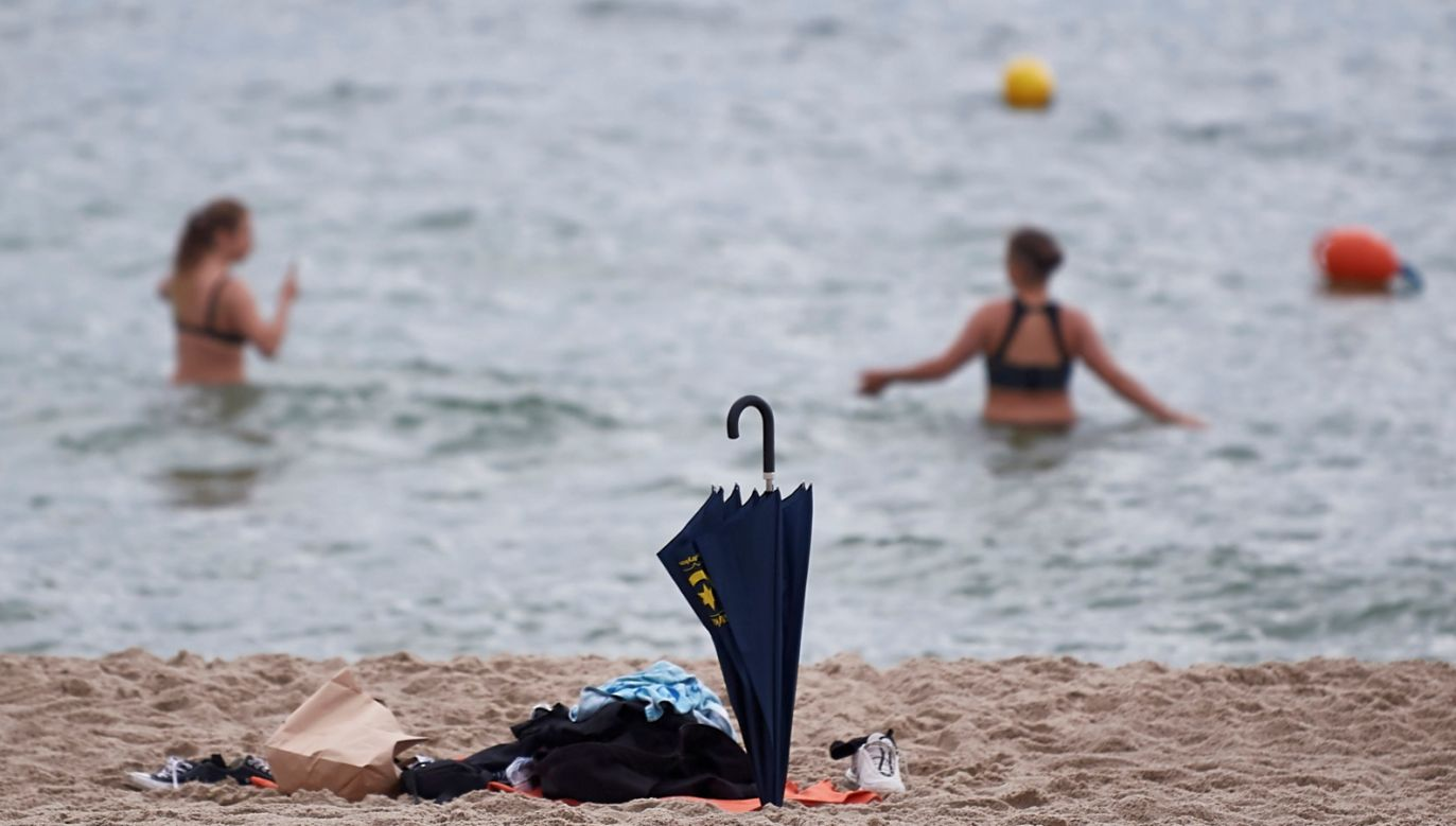 Latem w wodach Morza Bałtyckiego bardzo często pojawiają się zakwity sinic (fot.PAP/Adam Warżawa)