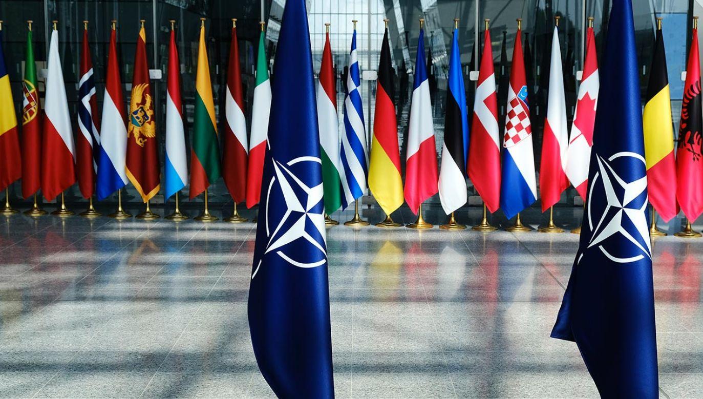 Grupę ekspertów NATO powołano wiosną bieżącego roku  (fot. Shutterstock/Alexandros Michailidis)