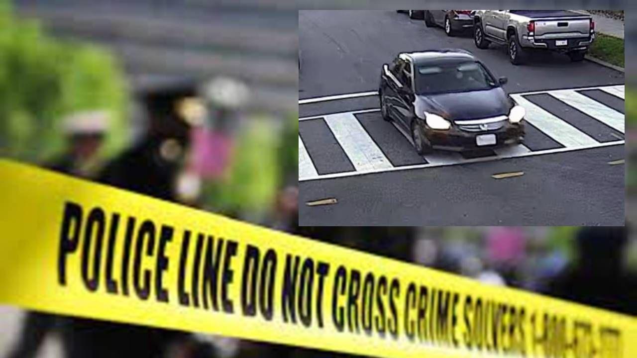 Policja ogłosiła, że poszukuje ciemnej hondy, którą zauważono w trakcie wydarzenia (TT/DC Police Dept_