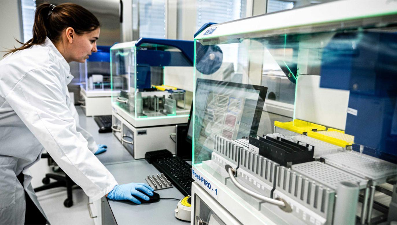 Świat nauki szuka sposobu na pokonanie koronawirusa (fot. PAP/EPA/ROB ENGELAAR)
