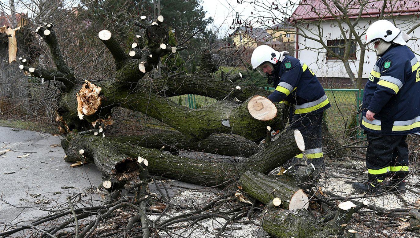 Do akcji wyjeżdżało ponad 13 tys. strażaków (fot. arch. PAP/Darek Delmanowicz)