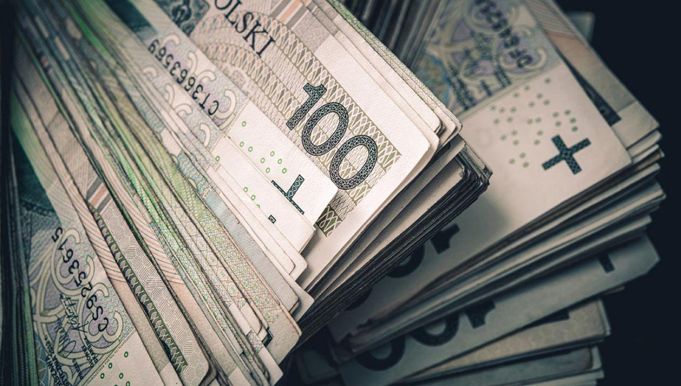 IPAG przewiduje, że w całym 2021 r. produkt krajowy brutto zwiększy się o 3,8 proc. (fot. Shutterstock/Virrage Images)
