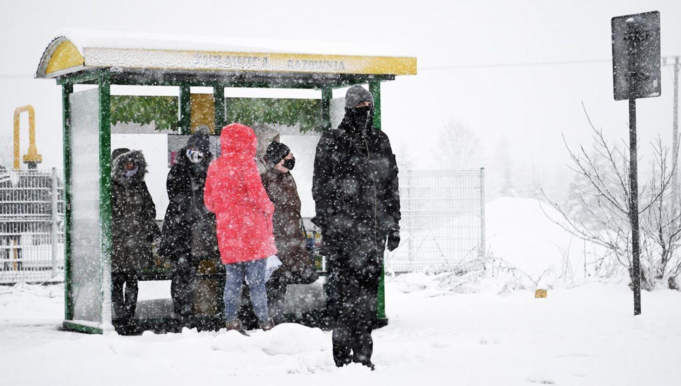 Prognoza pogody – wtorek 26 stycznia. W nocy będzie niebezpiecznie (fot. PAP/Darek Delmanowicz)