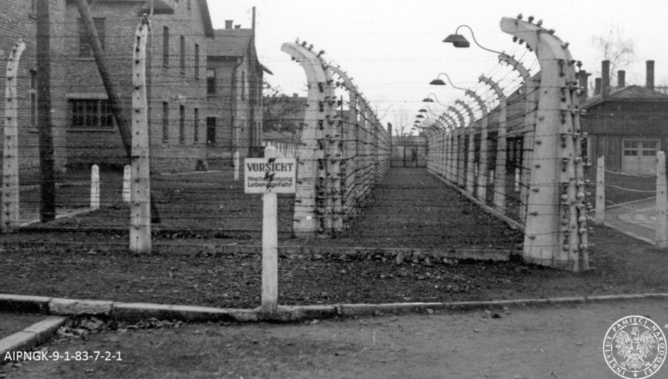 """Ośmiominutowy film o """"ochotniku do Auschwitz"""" powstał, we współpracy z Instytutem Pileckiego i Instytutem Pamięci Narodowej (fot. IPN)"""