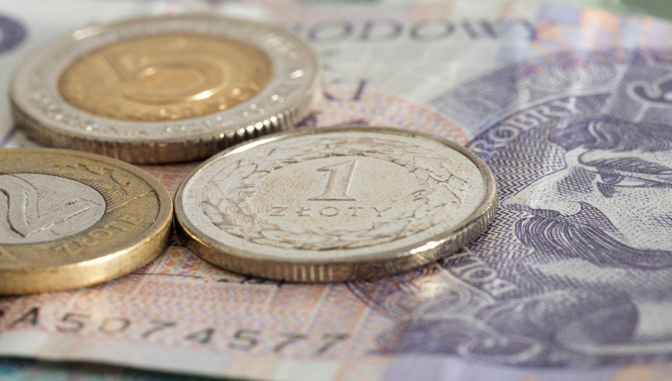 Z raportu wynika, że w 2020 r. nastąpi spowolnienie dynamiki PKB (fot. Shutterstock/Bartolomiej Pietrzyk)