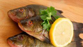 Dwie ryby randki