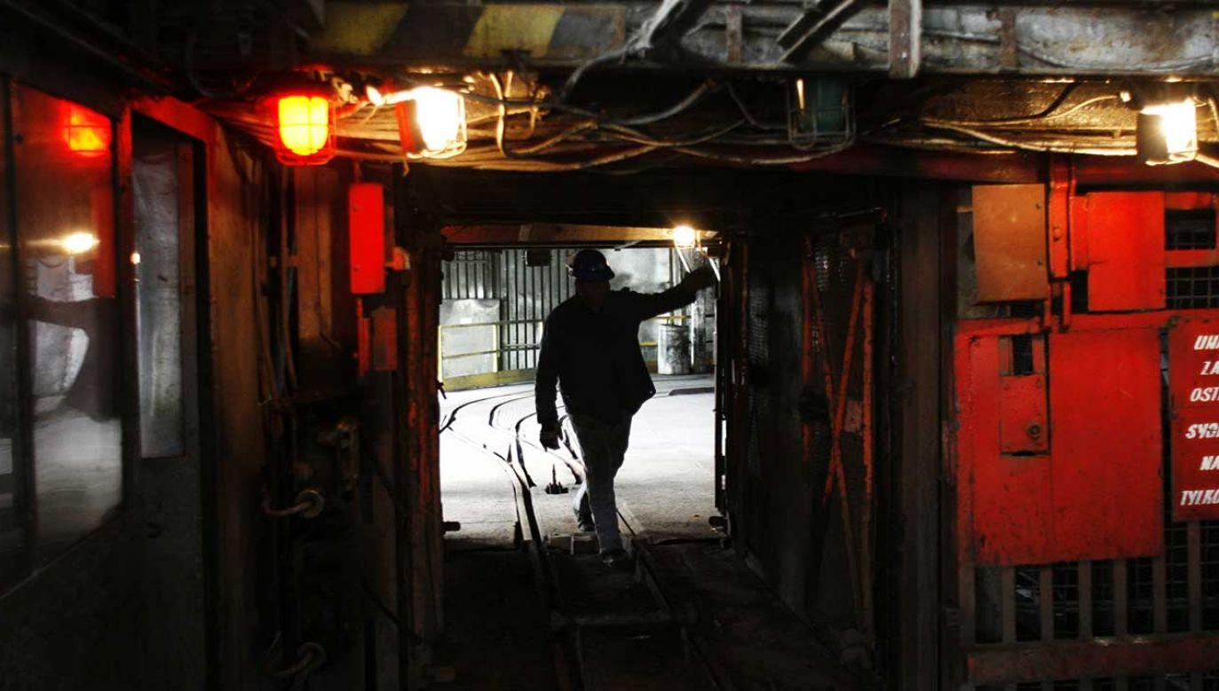 Przyczyny i okoliczności wypadku będzie ustalał nadzór górniczy (fot. arch. PAP/Andrzej Grygiel)