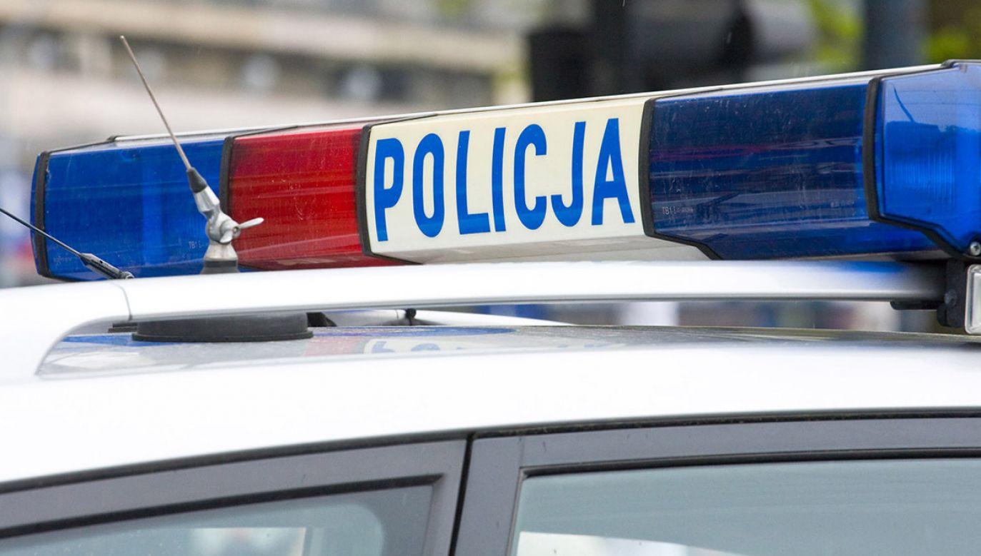 Policja uspokaja, że nie jest to groźny przestępca (fot. shutterstock/Dziewul)