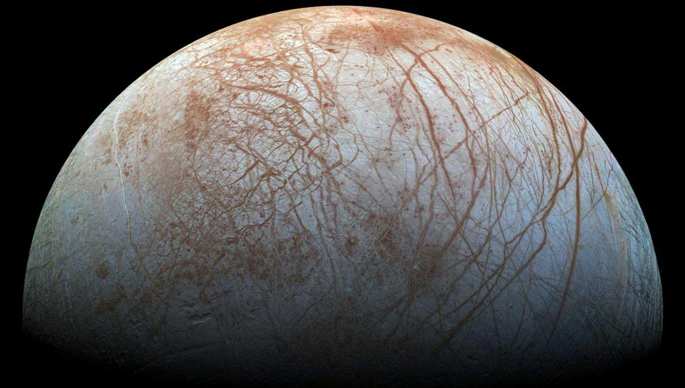 W lipcu 2018 r. ogłoszono odkrycie 12 nowych księżyców Jowisza (fot. REUTERS/NASA/JPL-Caltech/SETI Institute/ Handout)