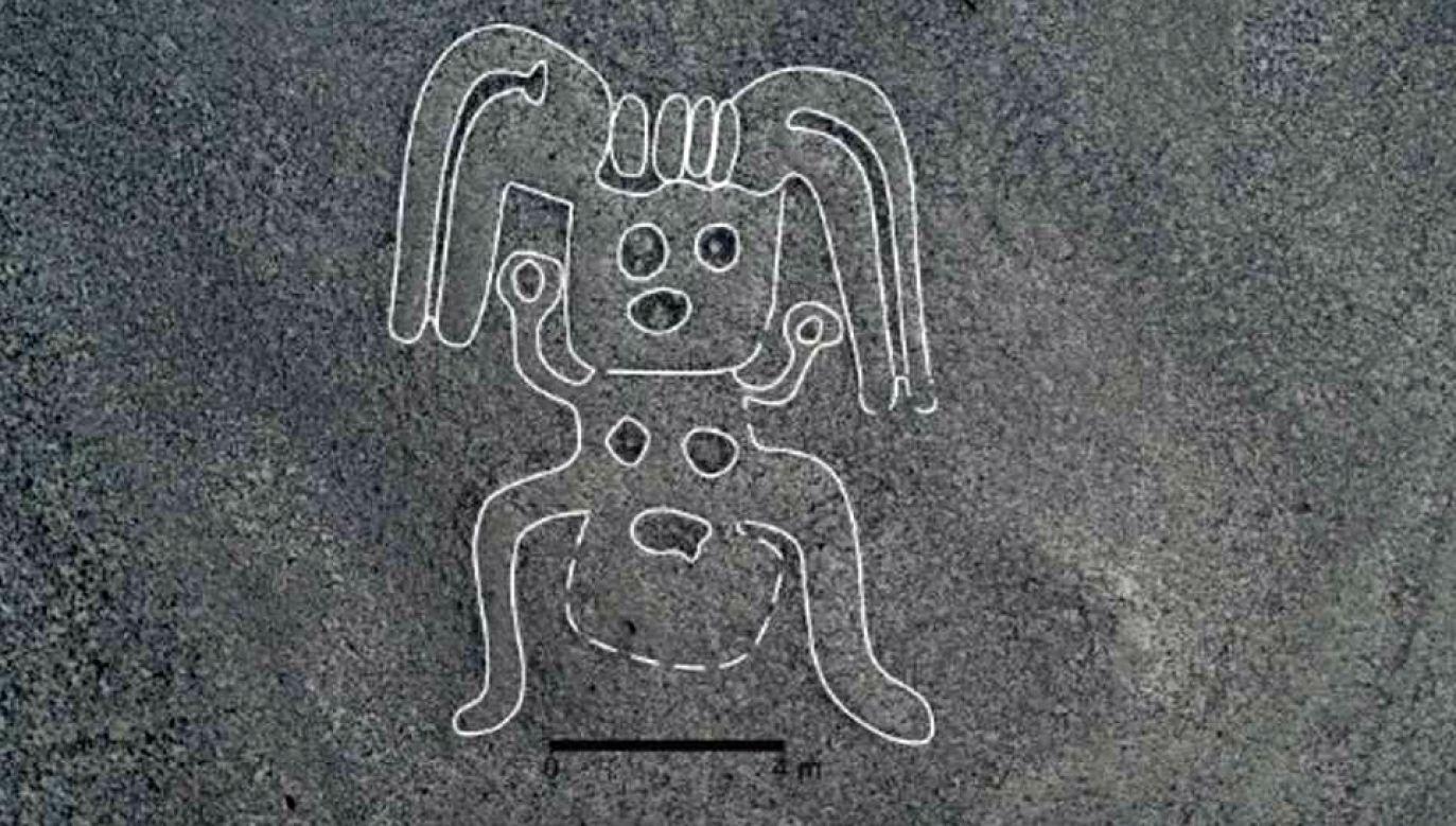 Do dziś nie ustalono, jakie było przeznaczenie geoglifów (fot. Uniwersytet Yamagata)