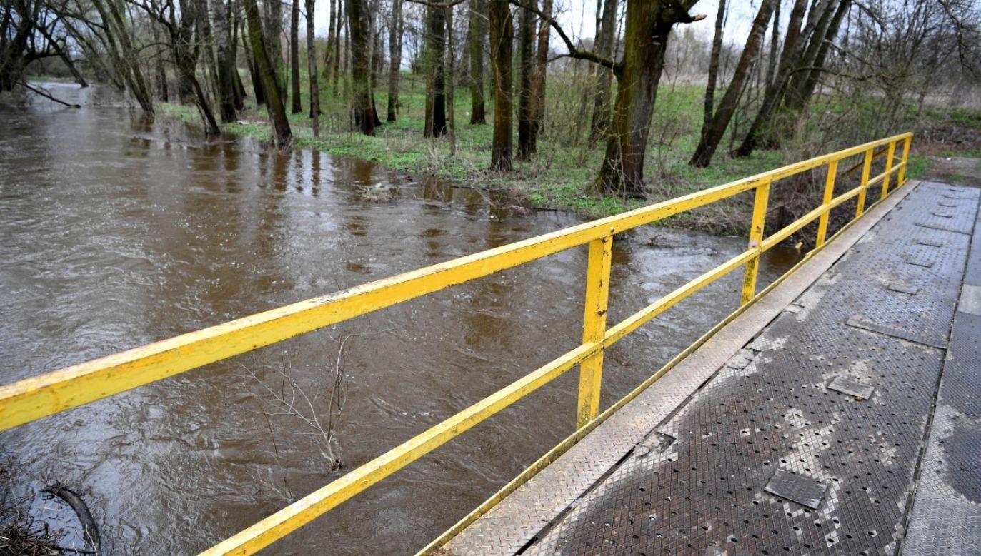 IMGW wydał alert drugiego stopnia dla części rzek w pięciu województwach na południu i wschodzie kraju(fot. arch. PAP/Darek Delmanowicz)