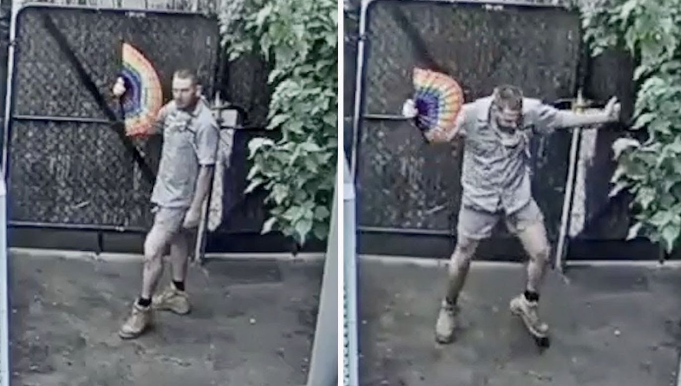 Opiekun zwierząt zatańczył przed kamerą (fot. Melbourne Zoo)