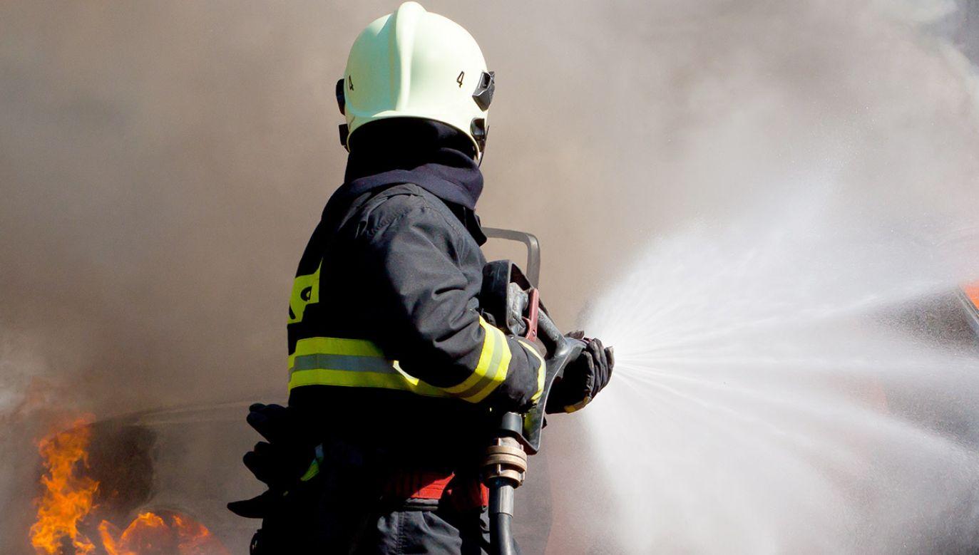Przyczyna pożaru nie jest znana (fot. Shutterstock/Martin Kucera)