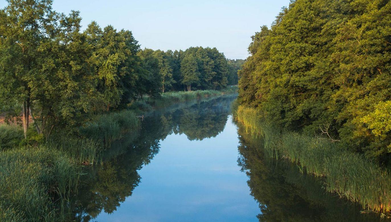 Akcja sprzątania rzek i okolic w ramach Operacja Rzeka 2021 ruszyły 22 marca (fot. Shutterstock/Oczy Oczu)