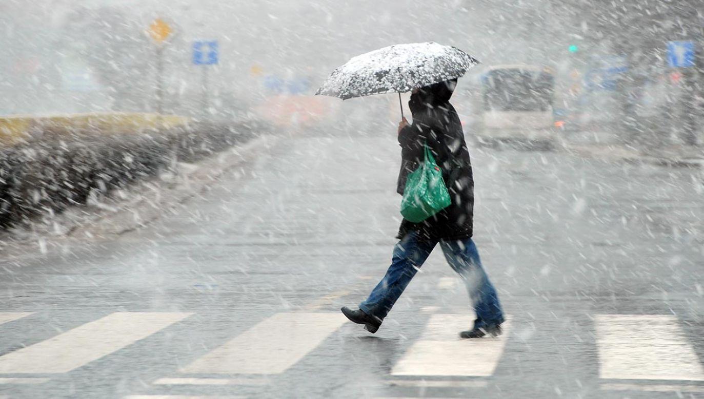 Nawet pogoda zachęca, by pozostać w domach (fot. PAP/Marcin Bielecki)