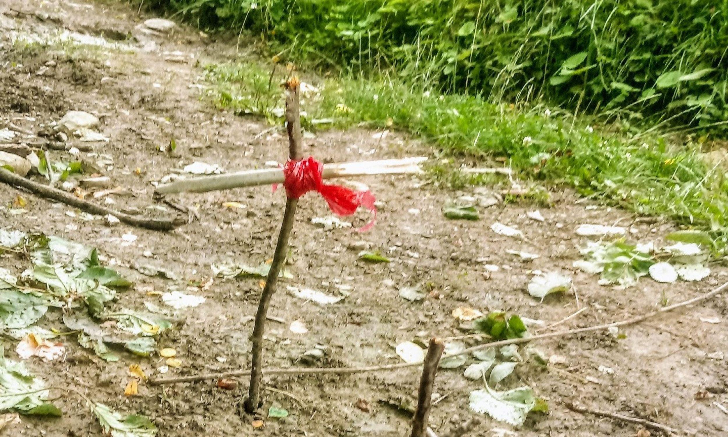 Daleko za wsią, na drodze prowadzącej w góry natknęłam się na krzyż zrobiony z patyków,  z przywiązaną do niego czerwoną wstążką. Obok był ołtarz, też z patyków, wyścielony liśćmi, na których leżała zdechła lub zabita żaba. To był prawdopodobnie magiczny rytuał pochowania wiedźmy. W Karpatach wierzy się, że pewne kobiety są wiedźmami, które zamieniają się w żabę, aby podchodzić do obory i  odbierać krowom mleko. Mówi się na nie bosorki – opowiada Olga Solarz. Fot. Olga Solarz