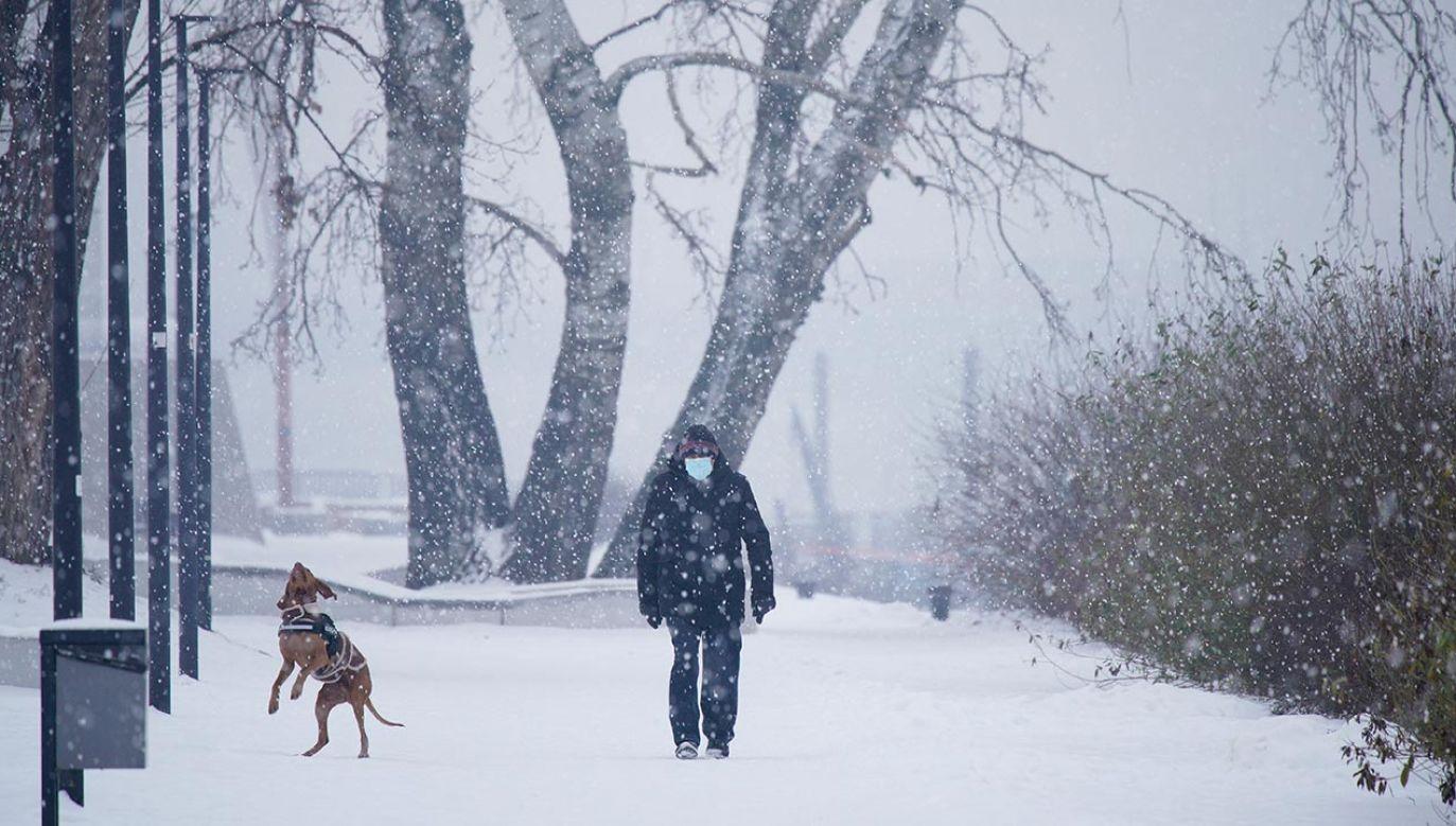 Jak pogoda będzie w lutym? (fot. Jaap Arriens/NurPhoto via Getty Images)