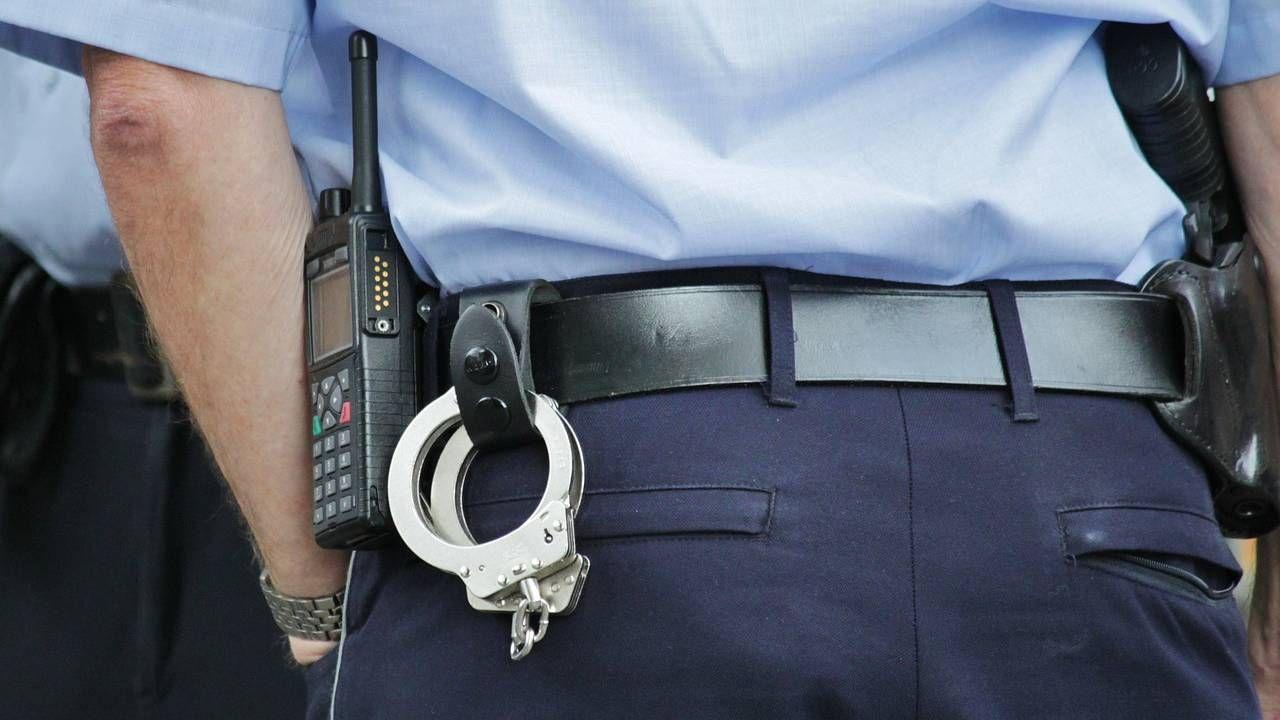 Policja zatrzymała Saki Sudo (fot. Pixabay)